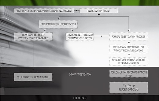 Figure 1: Complaint Resolution Process.Details in text following the Figure.